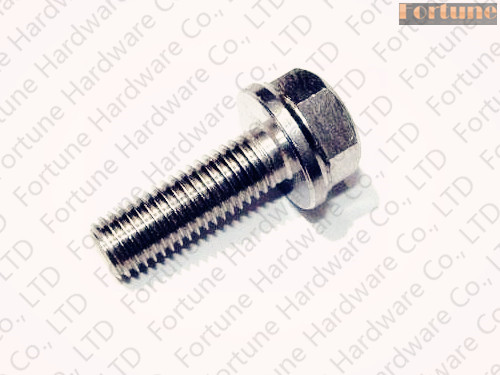 Stainless Steel Hex Flange Head Bolt